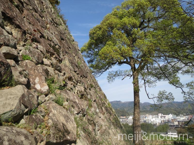 彦根城 石垣